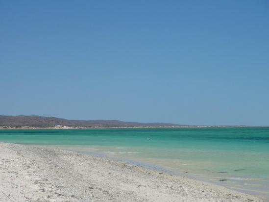 Turquoise Bay (Ningaloo MP)