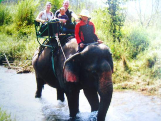 Dalat, balade à dos d'éléphant